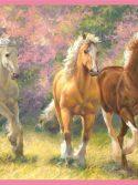 Faixa de parede cavalos no campo